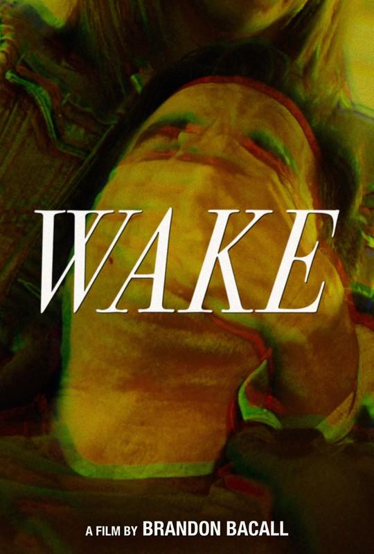 wake_movie_poster